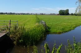 Inrichtingsplan landelijk gebied Sassenheim